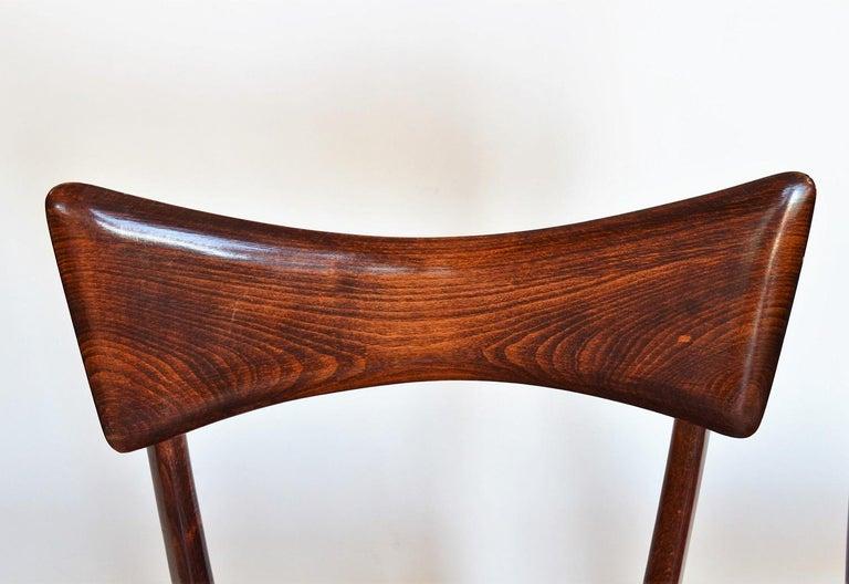 Italian Midcentury Beechwood Dining Chairs Restored in Blue Velvet, 1950s For Sale 3
