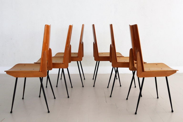 Italian Midcentury Dining Chairs by Carlo Ratti for Legni Curva, 1950s In Good Condition In Clivio, Varese
