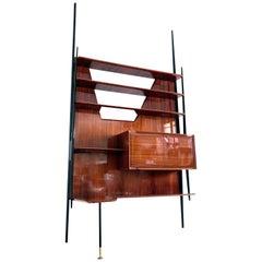 Italian Mid-Century Wall Unit or Bookcase by Vittorio Dassi, 1950s