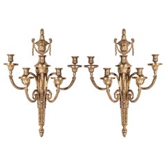 Italian Neoclassical Style Gilt Bronze Sconces