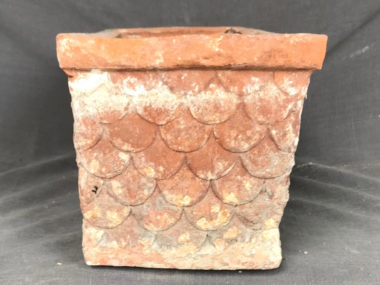 Hand-Crafted Italian Neoclassical Terracotta Planter For Sale