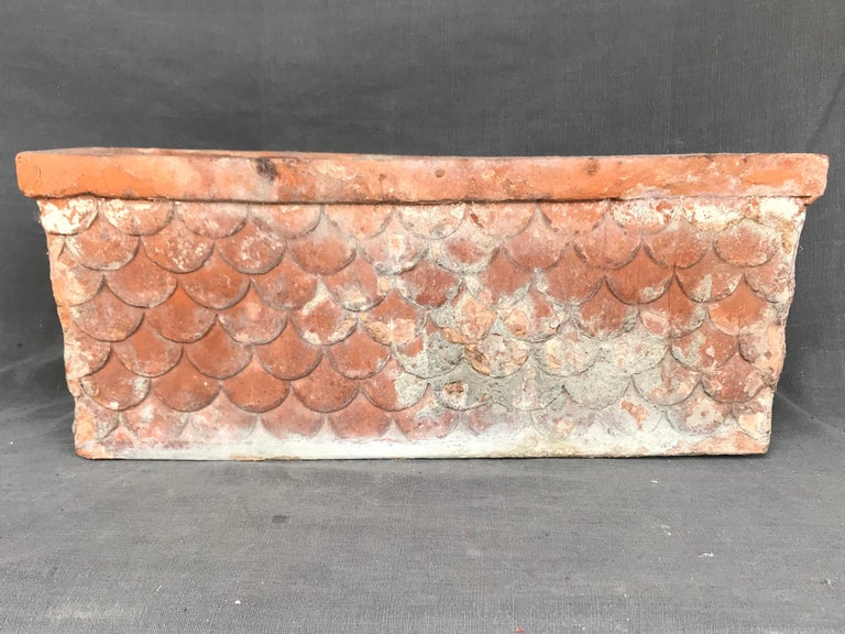 Italian Neoclassical Terracotta Planter In Good Condition For Sale In New York, NY