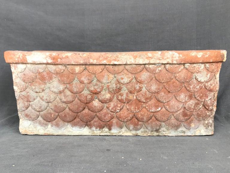 Italian Neoclassical Terracotta Planter For Sale 1