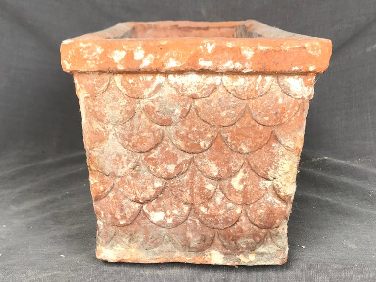 Italian Neoclassical Terracotta Planter For Sale 2