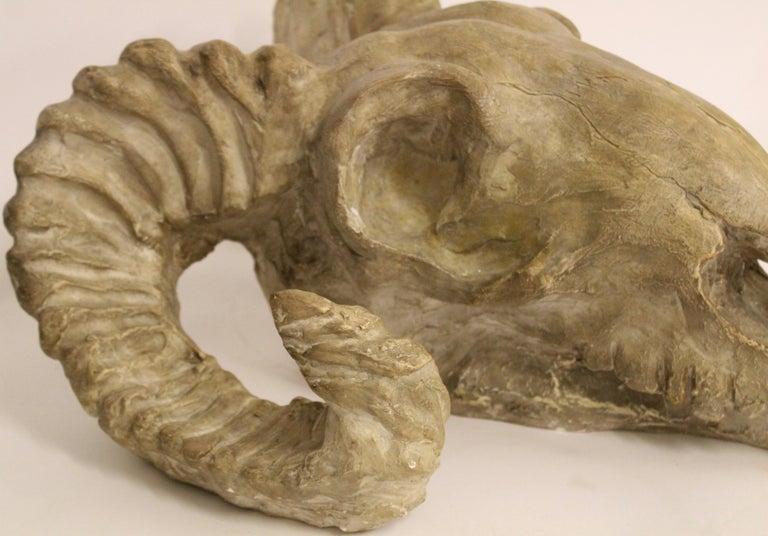 Italian Plaster Rams Head Skull, circa 1930 In Good Condition For Sale In London, GB