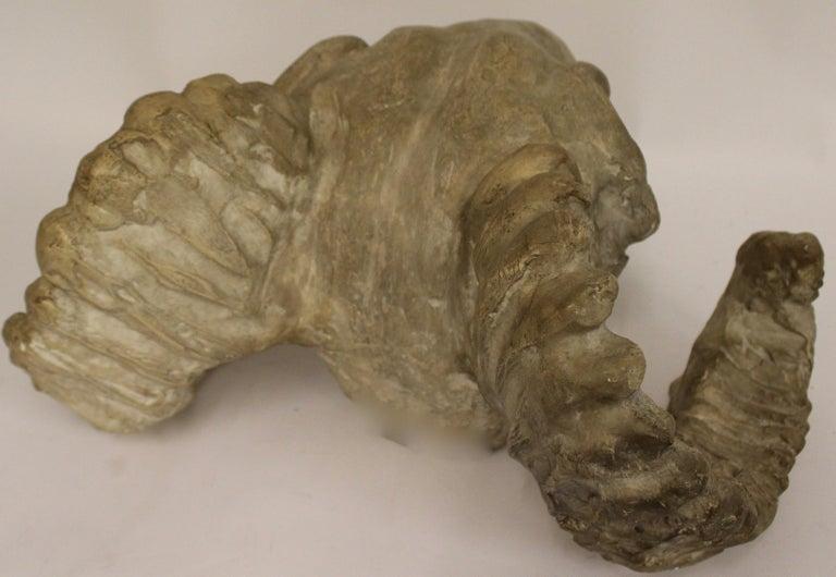 Italian Plaster Rams Head Skull, circa 1930 For Sale 4