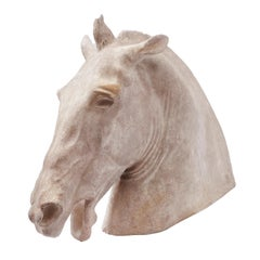 Italian Plaster Sculpture of the Head of the Horse of Selene, circa 1950