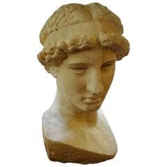 Italian Stone Bust of a Classical Roman