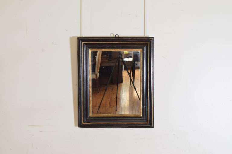 Having a raised inner section and a deep concave towards the rear and slightly wider outer section this mirror is ebonized with a gilded central molding and a gilded rabbet, the mirrorplate is modern.