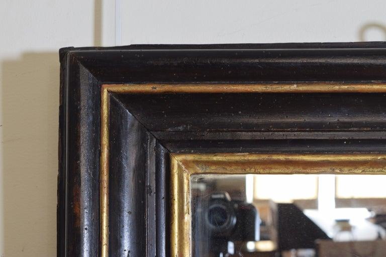 Pine Italian, Toscana, Giltwood and Ebonized Mirror, Mid 17th Century For Sale