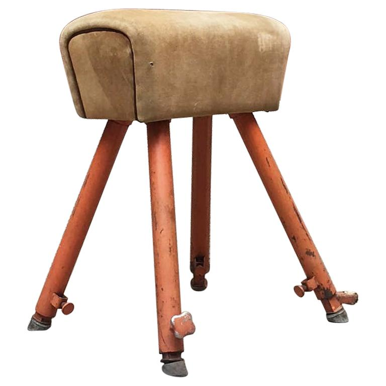 Italian Vintage Iron and Suede Gym Horse, 1960s