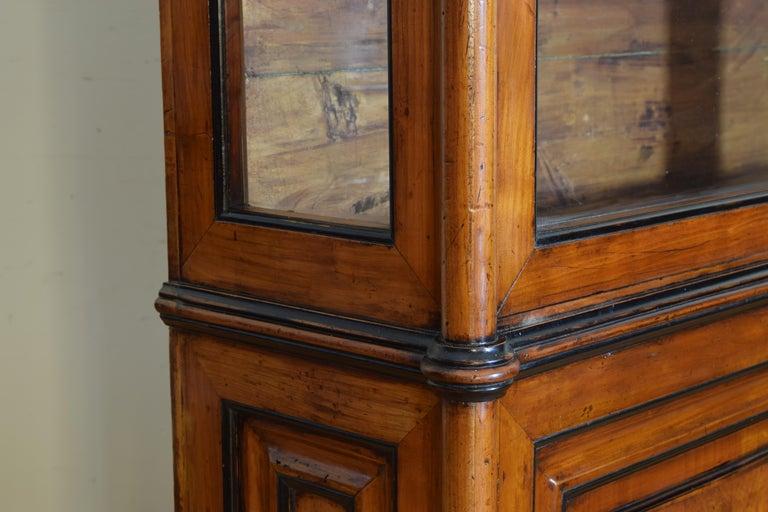 Italian Walnut and Ebonized Tall 2-Piece Bookcase Cabinet, Mid-19th Century For Sale 5