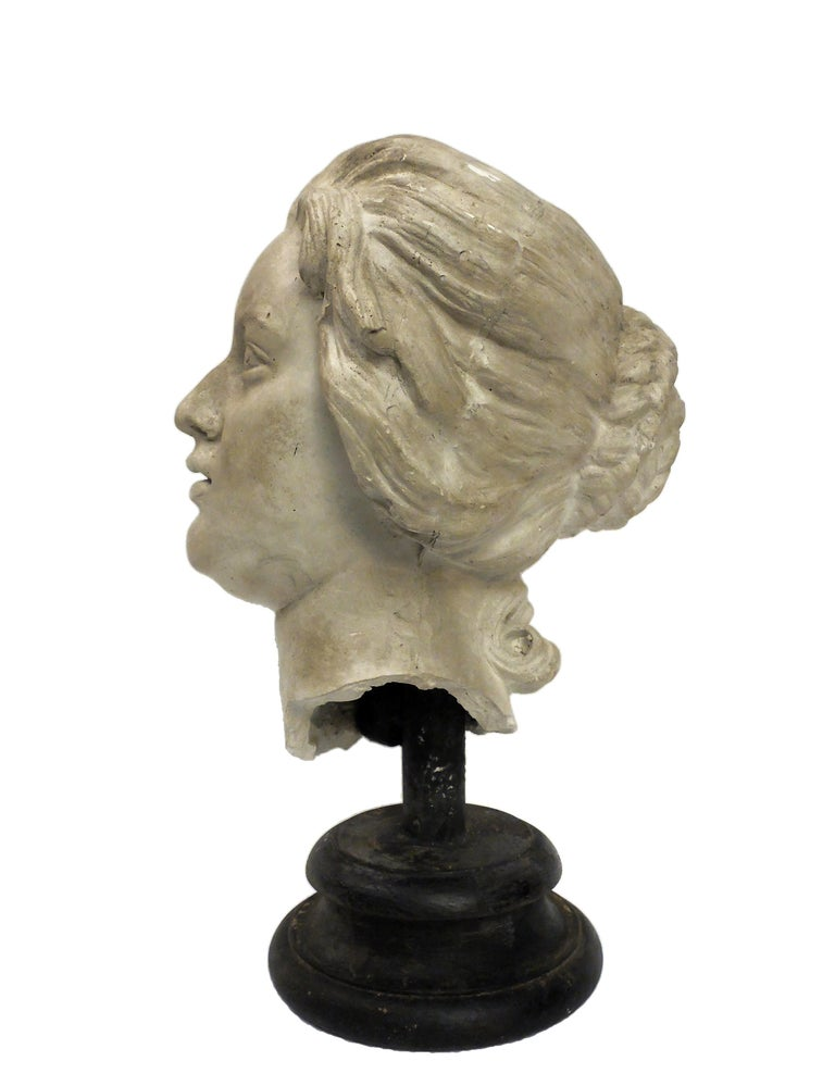 Over the wooden black painted base is set the superb cast of Costanza Bonarelli head. Cast for drawing teaching in academy, Italy, circa 1890