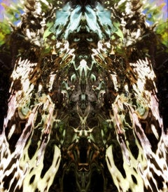 Icarus II, Digital on Metal