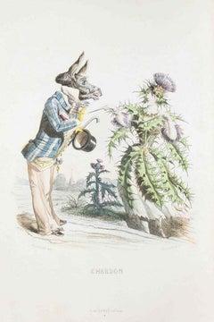Chardon - Les Fleurs Animées Vol.I - Litho by J.J. Grandville - 1847