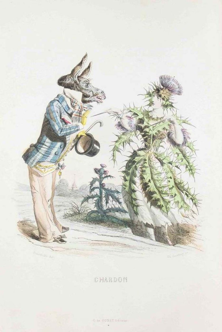 J. J. Grandville Figurative Print - Chardon - Les Fleurs Animées Vol.I - Litho by J.J. Grandville - 1847