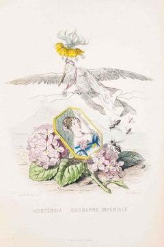Hortensia Couronne Impériale - Les Fleurs - Lithograph by J.J. Grandville - 1847