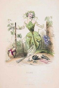 Vigne - Les Fleurs Animées Vol.II - Litho by J.J. Grandville - 1847
