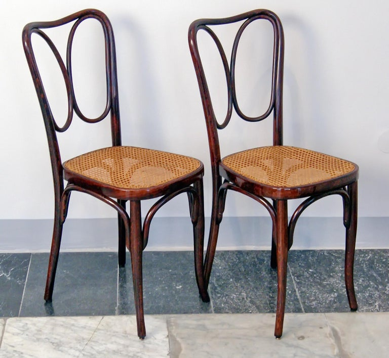 Jacob & Josef Kohn bentwood pair of chairs (model 243)