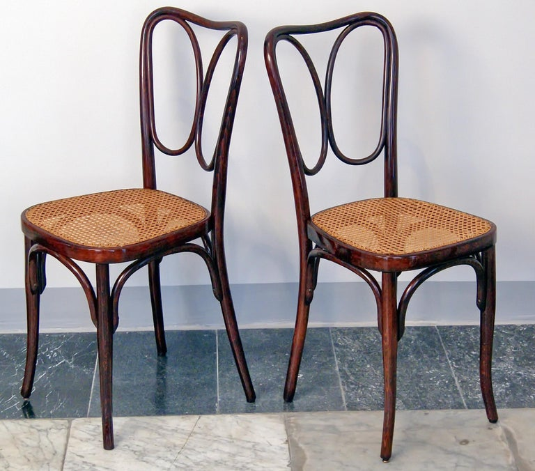 Austrian J. & J. Kohn Vienna Art Nouveau Bentwood Two Chairs Nr. 243 Mahogany c.1905 For Sale