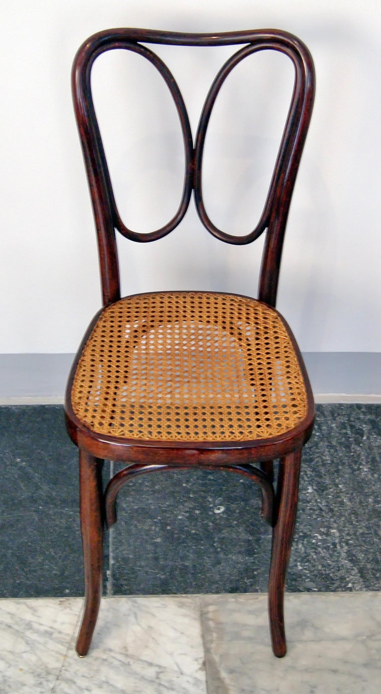 J. & J. Kohn Vienna Art Nouveau Bentwood Two Chairs Nr. 243 Mahogany c.1905 In Excellent Condition For Sale In Vienna, AT