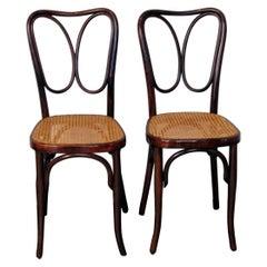 J. & J. Kohn Vienna Art Nouveau Bentwood Two Chairs Nr. 243 Mahogany c.1905