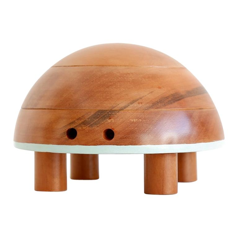 Jabuti, Brazilian Contemporary Collectible and Decorative Object