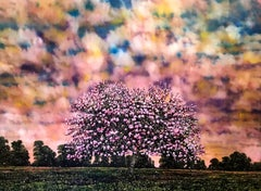 Aurora - Contemporary, Landscape Painting by Jack Frame