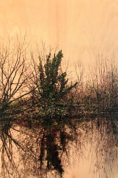 Riverside Reflection II - Contemporary, Landscape Painting by Jack Frame