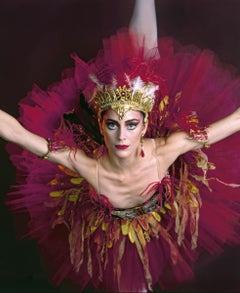 American Ballet Theatre dancer Christine Dunham in 'The Firebird' 17 x 22""
