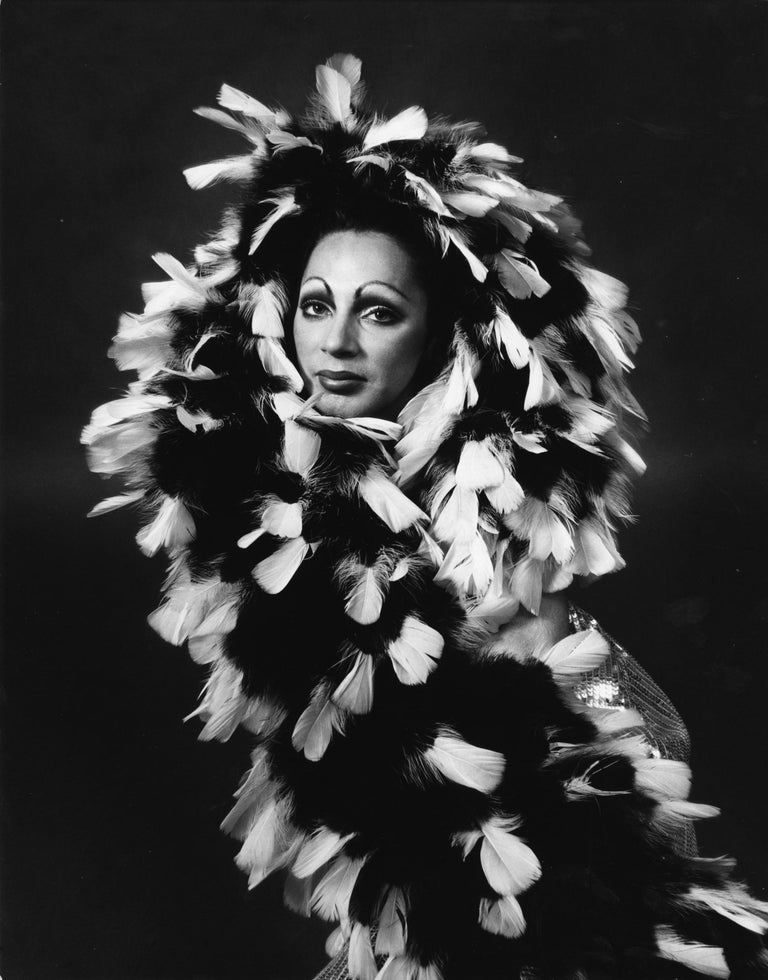 Jack Mitchell Black and White Photograph - Holly Woodlawn