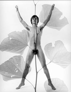 Male model Milton Dean multiple exposure nude, signed by Jack Mitchell