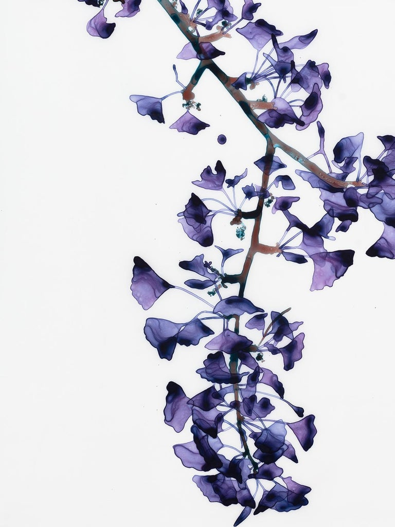 Delicate Slope Cs Vertical Botanical Painting on Mylar, Purple, Brown, Teal Blue For Sale 1