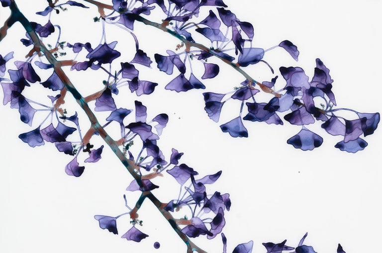 Delicate Slope Cs Vertical Botanical Painting on Mylar, Purple, Brown, Teal Blue For Sale 2