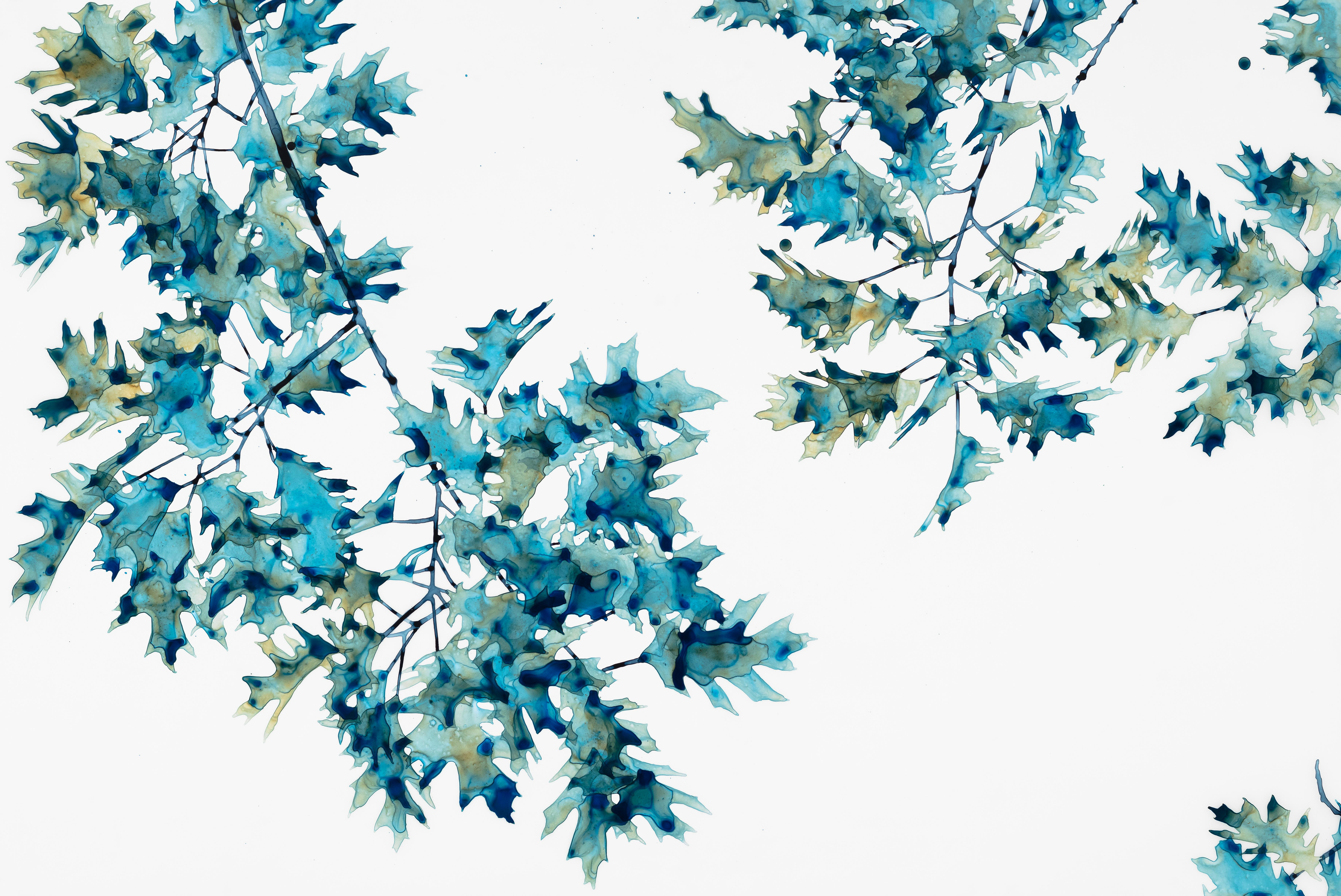 First Frost, Horizontal Botanical Tree Painting in Teal Green on White Mylar