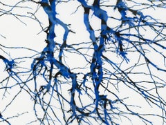 Inazuma m1, Horizontal Tree Painting on Mylar with Blue, Navy Branches
