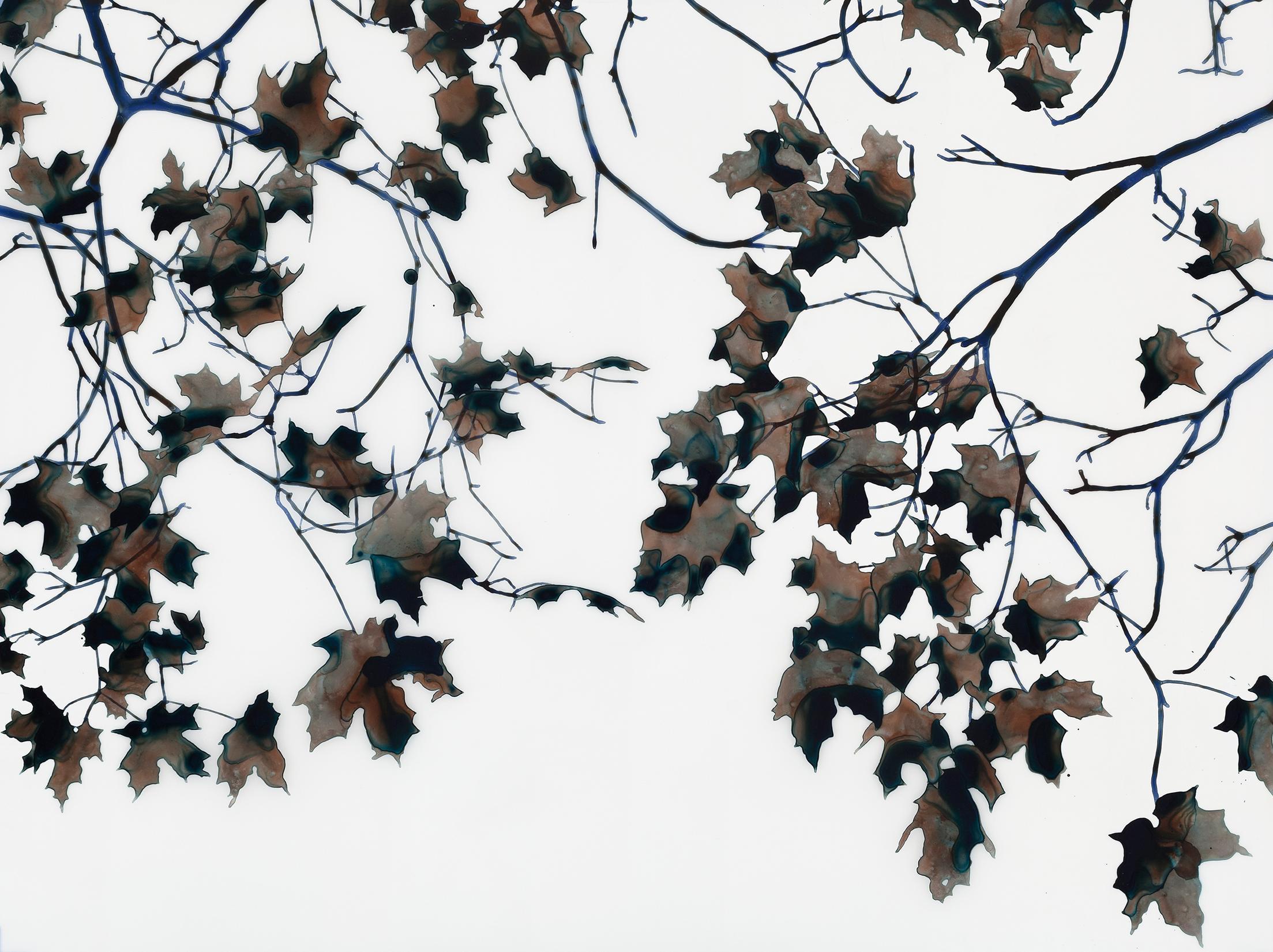 Night Light Mcs Horizontal Botanical Mylar Tree Painting in Black, Brown, Cobalt