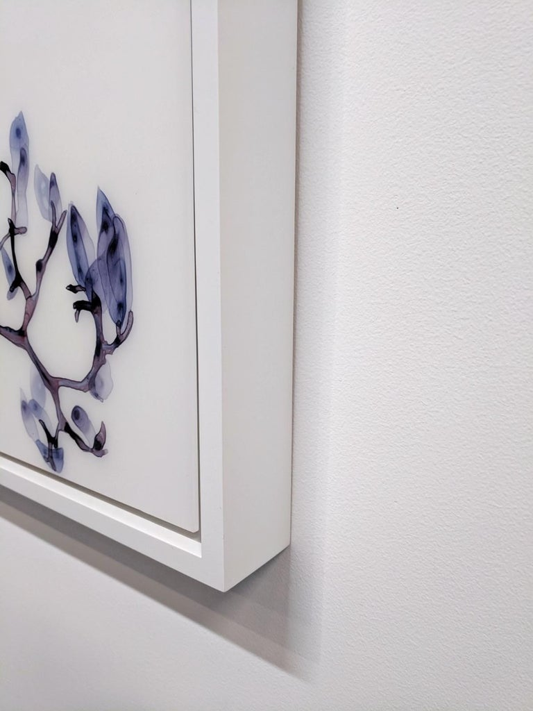 Vermiculate Magnolia, Large Horizontal Purple, White Botanical Painting On Mylar For Sale 2