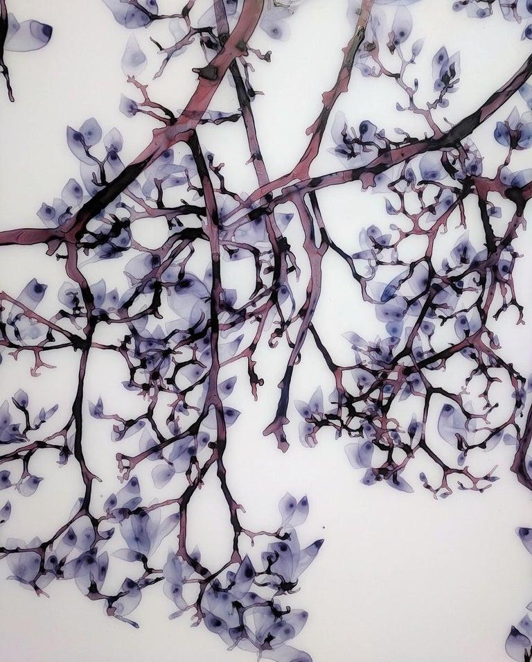 Vermiculate Magnolia, Large Horizontal Purple, White Botanical Painting On Mylar For Sale 5
