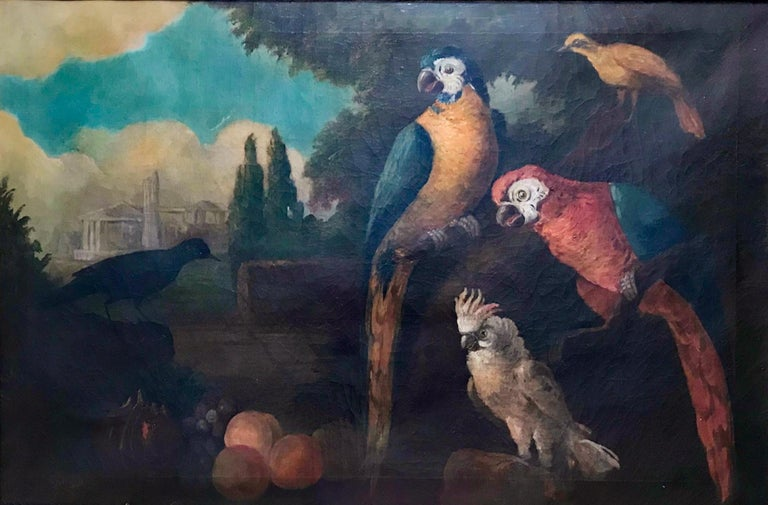 English Jacob Bogdani Follower, Still Life with Parrots Oil on Canvas For Sale