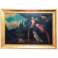 Jacob Bogdani Follower, Still Life with Parrots Oil on Canvas