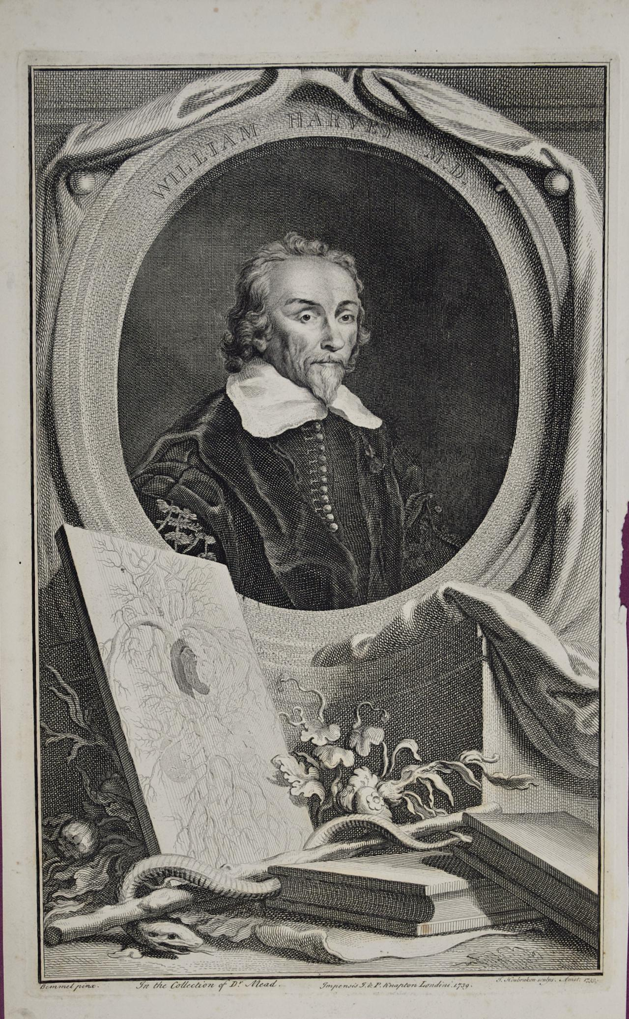 18th C. Portrait of William Harvey, MD: 17th C. Circulatory System Discoveries