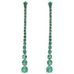 JAG New York Emerald Drop Earrings in Platinum