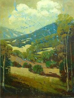 Knights Valley Hillside