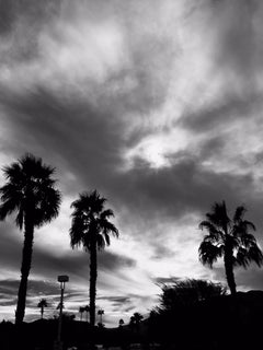 #inthesky Series: Palm Springs #2