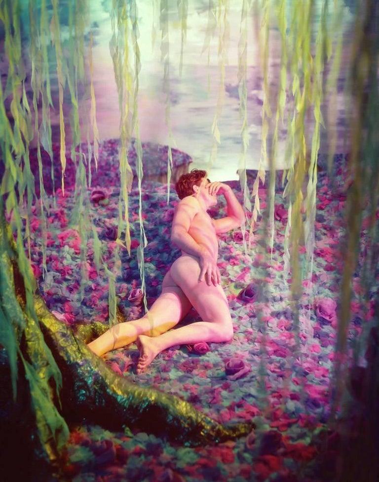 James Bidgood Nude Photograph - Willow Tree
