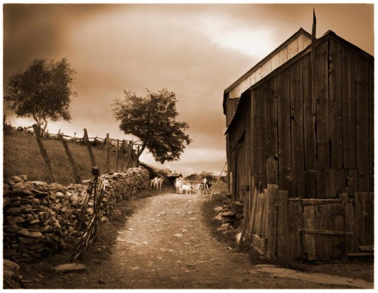 James Bleecker Landscape Photograph - Quimby Farm, Marlborough, NY (Sepia Toned Pigment Print of a Barn and Goats)
