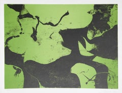 Abstract Expressionist Lithograph by James Brooks