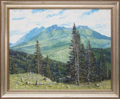 Summer - San Juans (Colorado)