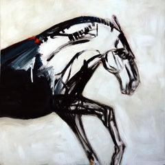 Horse in White Field